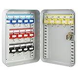HMF 12520-07 Schlüsselkasten 20 Haken verstellbare Hakenleisten, 25,0 x 17,0 x 7,5 cm, lichtgrau